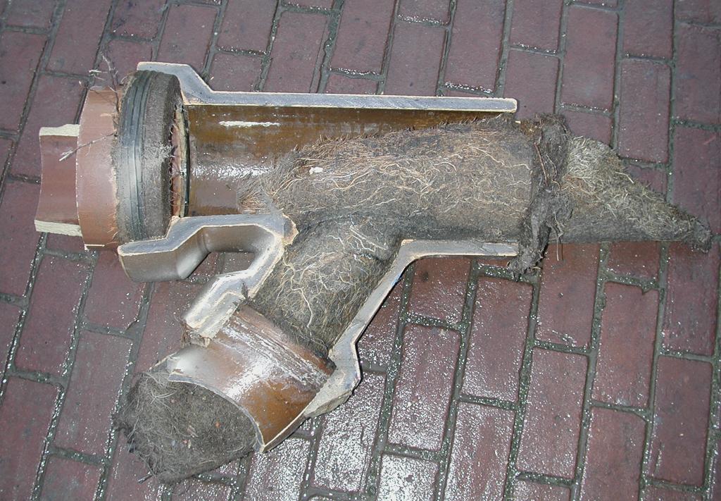 Favorit Rohre vor Wurzeln schützen – und Wurzeln vor Rohren CV17
