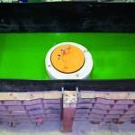 rundes Objekt in schwarzem Prüfstand mit grüner Prüfflüssigkeit
