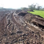Workshop: Bodenkundliche Baubegleitung