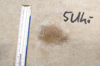 Feuchtefleck kleiner 25 cm
