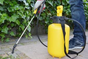 Sprühen von Pflanzenschutzmitteln auf gepflasterte Fläche