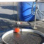 Dürre in Deutschland: Das IKT lässt es regnen