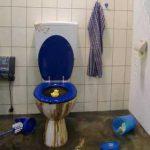 Wichtiger Hinweis der Abwasserbetriebe: Toilettenpapier-Alternativen richtig entsorgen – Rückstau vermeiden
